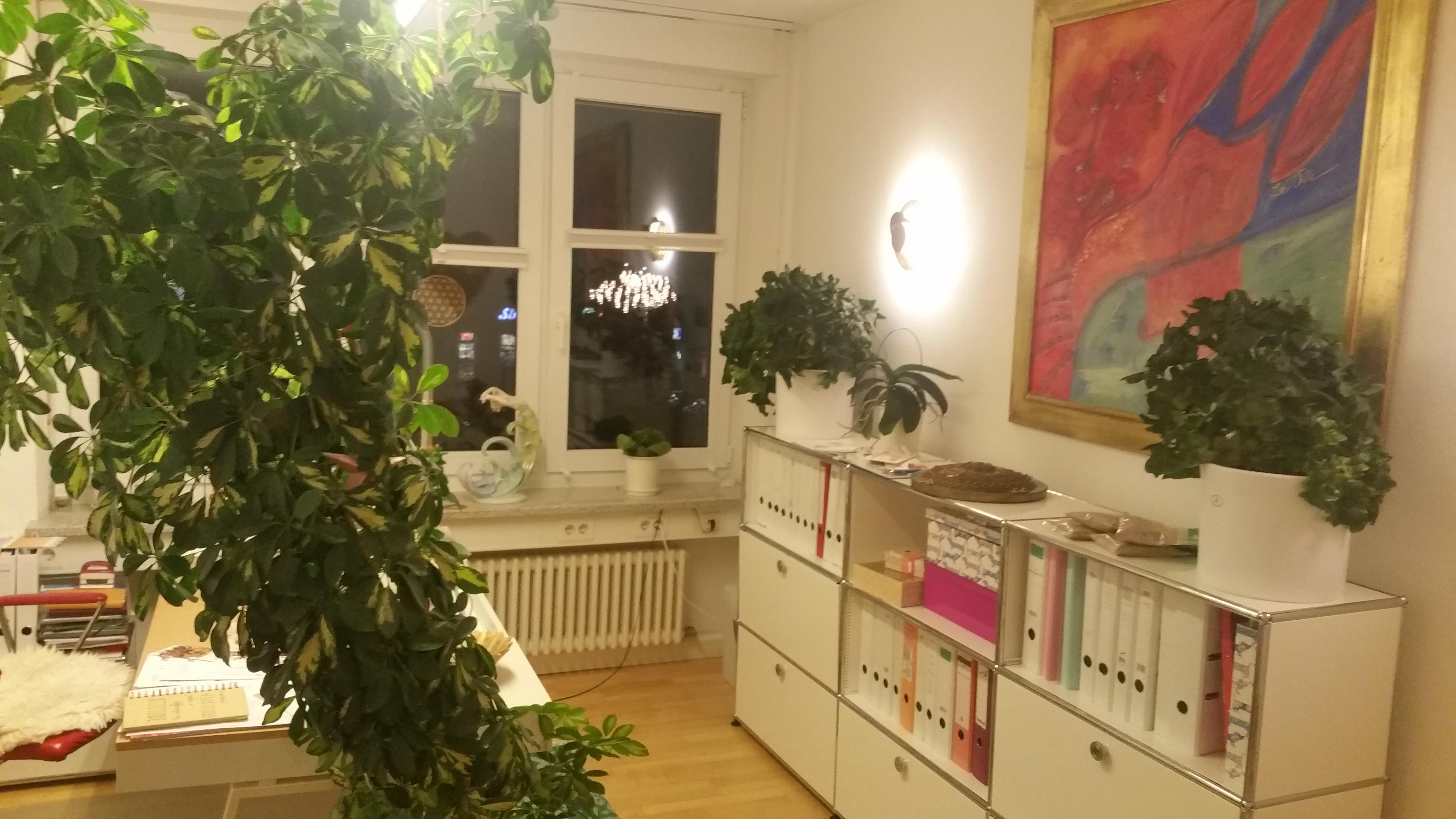 Büro-Ulm