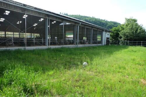 Kuhstall Altenstadt 3